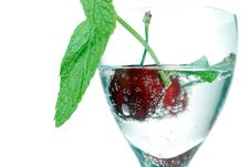 Free Sour Cherry Royalty Free Stock Image - 5182256