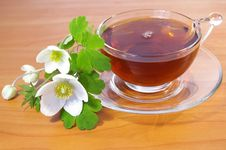 Free Spring Flowers And Cup Of Tea Stock Images - 5182374