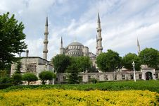 Free Blue Mosque Behind Yellow Euonymus Stock Photos - 5185783