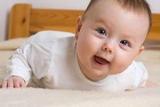 Free Baby Toddling Royalty Free Stock Photo - 5185805