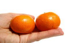 Free Tangerines Royalty Free Stock Photos - 5188878