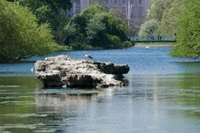 Free St James Park Royalty Free Stock Photography - 5189047