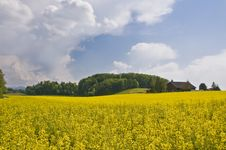 Free Swiss Countryside Stock Photos - 5189943