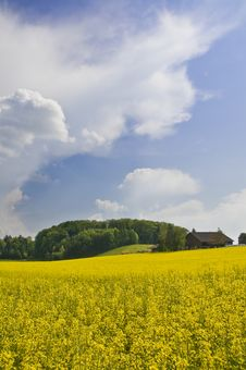 Free Swiss Countryside Stock Photography - 5189962