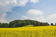 Free Swiss Countryside Stock Photo - 5189980