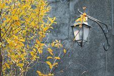 Free Arqua Petrarca, Padua, Italy Stock Images - 51850954