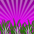 Free Grass [04] Stock Image - 5194231