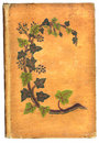 Free Antique Book Cover Stock Image - 5196141