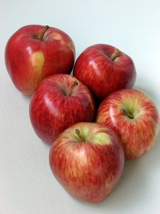 Free Large Ripe Apples Stock Photography - 5191522
