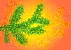 Free Christmas Tree Branch Royalty Free Stock Image - 5192306
