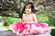 Free Girl In Flower Garden Royalty Free Stock Photo - 5192995