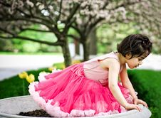 Free Girl In Flower Garden Stock Photos - 5193073