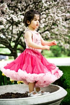 Free Girl In Flower Garden Stock Photography - 5193082