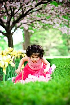 Free Girl In Flower Garden Stock Images - 5193344