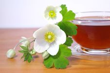 Free Flowers And Black Tea Royalty Free Stock Images - 5193719