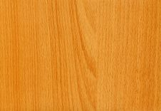 Free Close-up Wooden Beech Maintal Texture Stock Image - 5193881