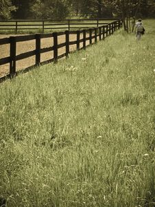 Free Man Walking Through A Field Stock Images - 5194704