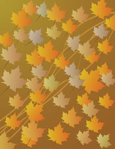 Maple Leaf Abstract Background Stock Images