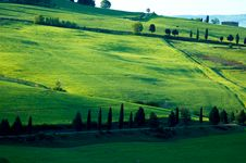 Free Italian Fields Royalty Free Stock Photography - 5196417