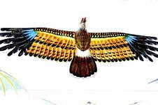 Free Kite Of Eagle Royalty Free Stock Photos - 5196478