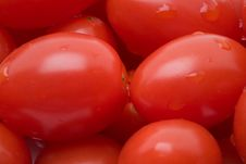 Free Tomato Background Royalty Free Stock Images - 5196549