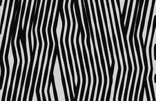 Free Zebra Royalty Free Stock Images - 5197149