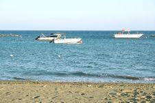 Free At The Sea Stock Image - 5197781