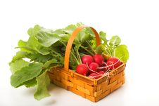 Basket With A Garden Radish Stock Photo
