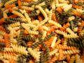 Free Rotini Multi-Colored Pasta Royalty Free Stock Photo - 524095