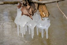 Free Icicles Royalty Free Stock Image - 521396