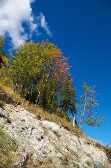 Free Mountainside, Trees And Blue Sky Stock Photo - 522890