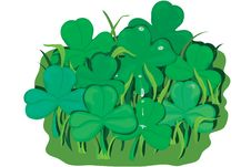 Free Clover Patch Stock Photo - 526350