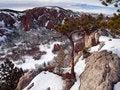 Free Winter Overlook Tree Stock Images - 5209604