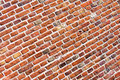 Free Brick Wall Royalty Free Stock Image - 5209726