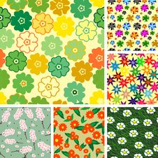 Collection Of Seamless Flower Patterns Stock Image
