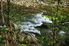 Free Water Streams And Cascades Stock Photo - 5200640
