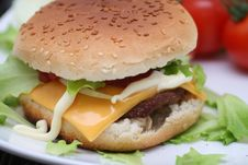 Free Cheeseburger Royalty Free Stock Image - 5200786