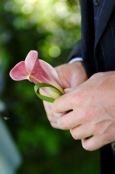 Free Wedding Flower Royalty Free Stock Image - 5201236