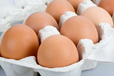 Free Brown Eggs, Isolated Royalty Free Stock Photos - 5202248