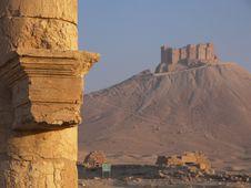 Free Palmyra, Syria Royalty Free Stock Image - 5206646