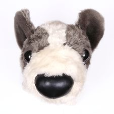 Free Dog Toy 1 Royalty Free Stock Image - 5209006