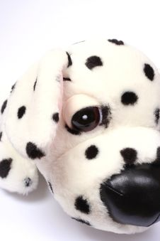 Free Dalmatian Toy Stuffed Dog Royalty Free Stock Photography - 5209027