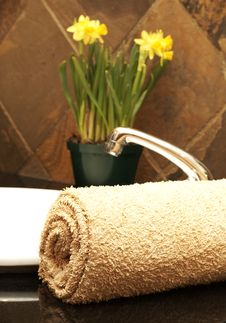 Free Rolled Up Towel And Flowers In The Bathroom Royalty Free Stock Photo - 5209185
