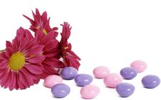 Free Pink Daisy Flowers With Colorful Candy Royalty Free Stock Photo - 5209795