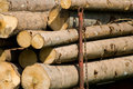 Free Timber On The Wagon Stock Photography - 5214622