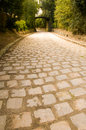 Free Road With Pictoresque Bridge Royalty Free Stock Images - 5218019