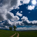 Free Road, Sky And Grass Royalty Free Stock Images - 5218529