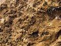 Free Wet Stone Stock Image - 5218981