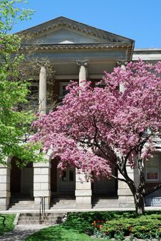 Courthouse Garden Royalty Free Stock Image