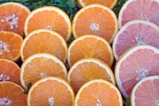 Free Citrus Fruits Stock Photo - 5211080